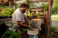 A man sits and plants new plants in his garden.