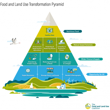 A graphic depicting a pyramid, which illustrates different levels of transformation for the food and land use sectors.