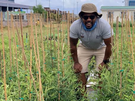 In South Africa, Siyabulela Sokomani's Nguni Nursery grows native trees for restoration projects.