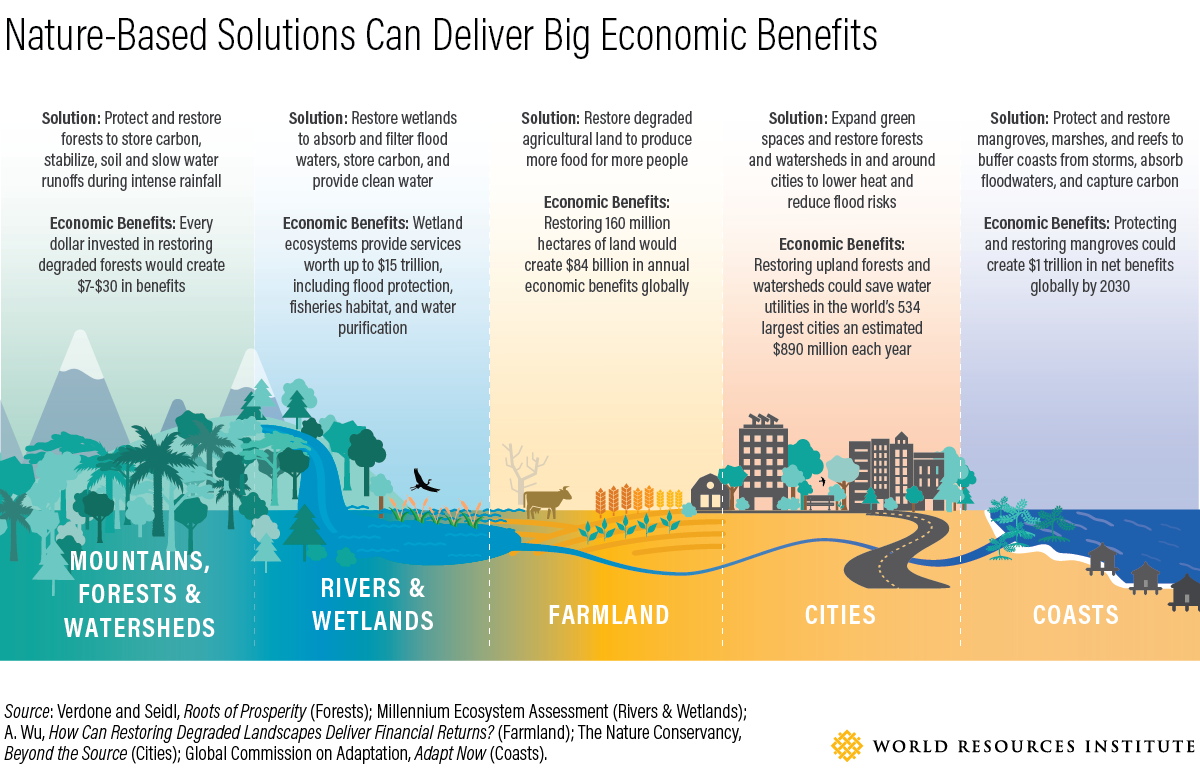Describes the economic benefits of nature-based solutions