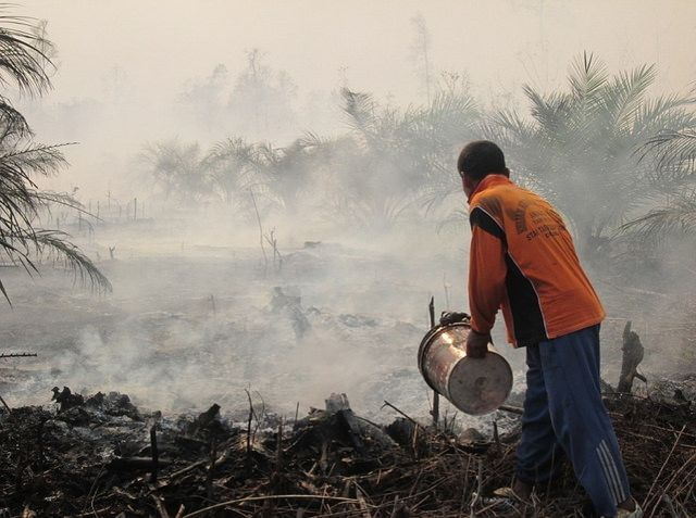 Forest and peat fire in Riau, Indonesia