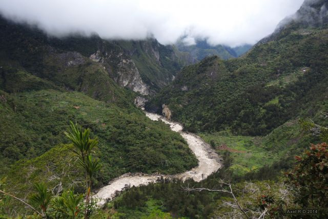 Forest in Baliem Valley, West Papua. Flickr/Axel Drainville