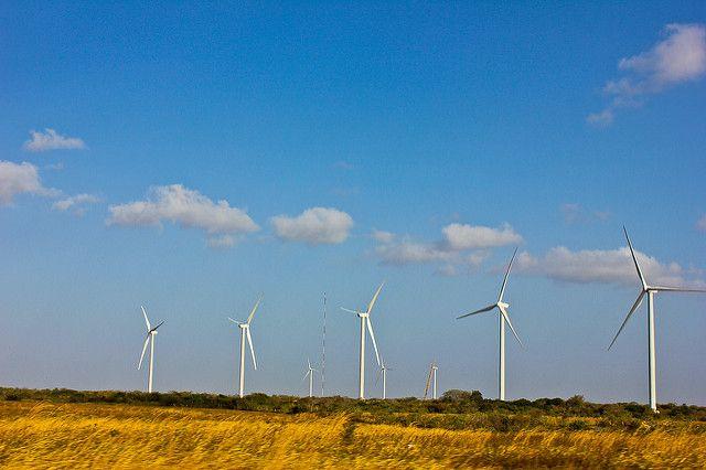 Wind turbines in Panama.