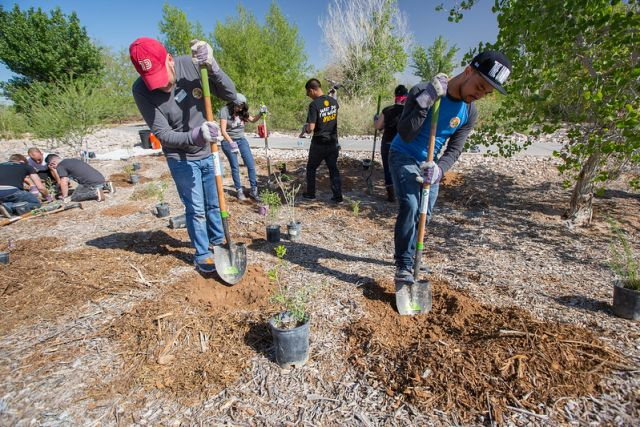 Planting trees with The Nature Conservancy