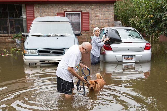 North Charleston flooding from Hurricane Joaquin in 2015. Photo Credit: Ryan Johnson/Flickr