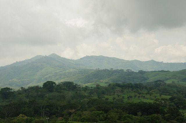 pasture in Costa Rica