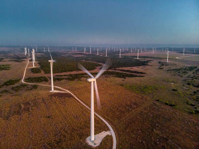 Sunrise 1 wind farm in Texas. Flickr/Daxis
