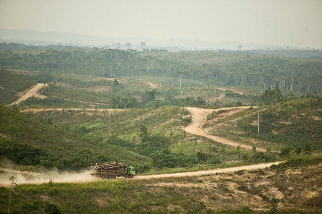 logging truck transporting timber