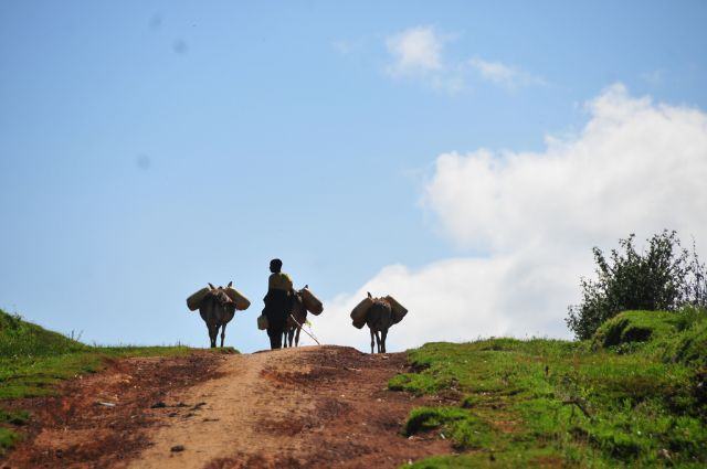 Development banks can make the long road to sustainability easier. Flickr/Mountain Partnership at FAO