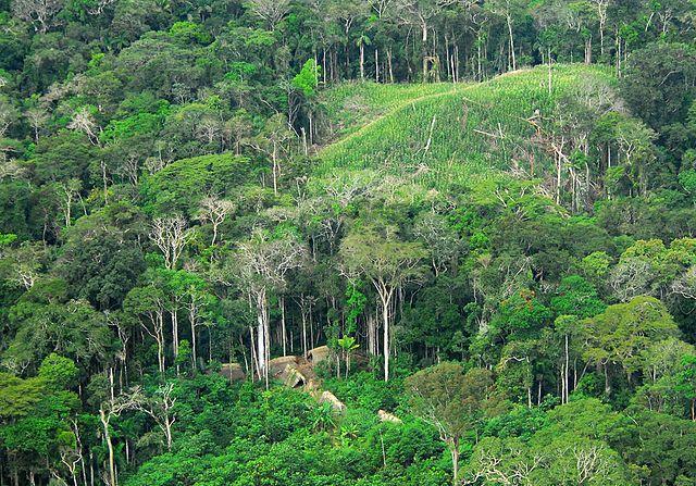 Brazilian state of Acre