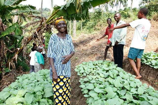Community farming in Democratic Republic of the Congo