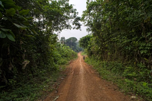 Near Lukolela, DRC. Flickr/CIFOR.