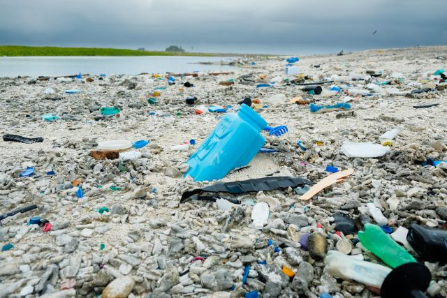 Plastic pollution piles up on a beach on Clipperton Atoll in the Pacific. Flickr/Clifton Beard