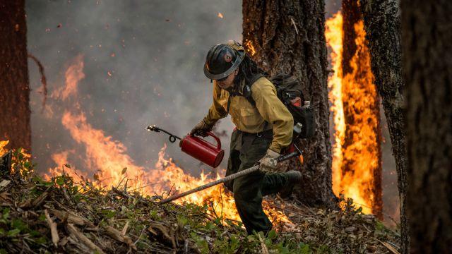 Firefighter in Arizona. Flickr/USDA