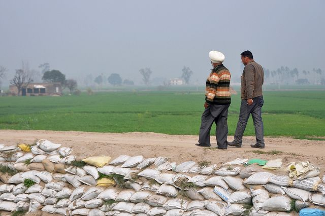 Adaptation was a central theme of the Bonn climate talks. Photo credit: CGIAR Climate, Flickr