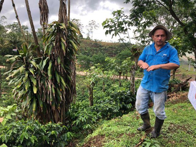 Don Armando Navarro explains the climate adaptation measures he has implemented on his coffee farm. Photo by Stefanie Tye