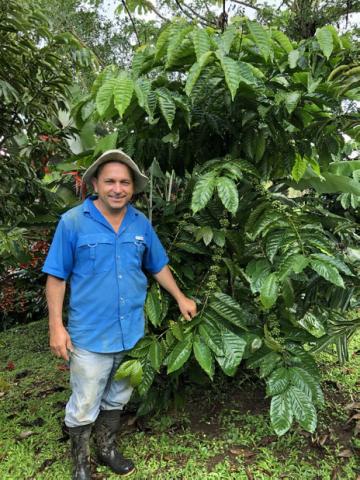 Costa Rican coffee farmer Armando Navarro
