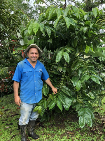 Armando Navarro, productor de café costarricense
