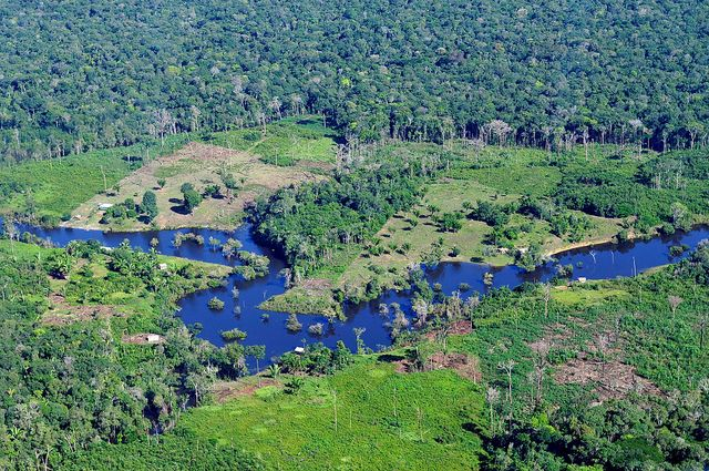 A new study evaluates government-managed funds meant to protect Brazil's Amazon rainforest. Photo credit: Neil Palmer/CIAT for Center for International Forestry Research