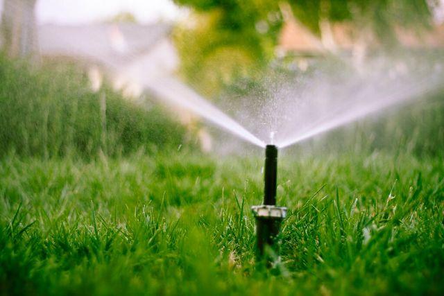 water sprinkler on lawn