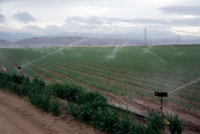 California's companies, farms, and residents are highly dependent on limited, carefully managed amounts of water—making them vulnerable to even the slightest changes in supply. Photo Credit: USDA, Flickr 2014