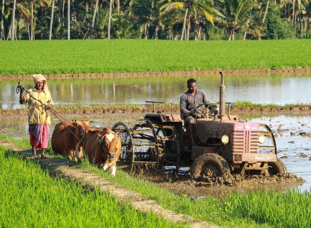Two people plowing a field.