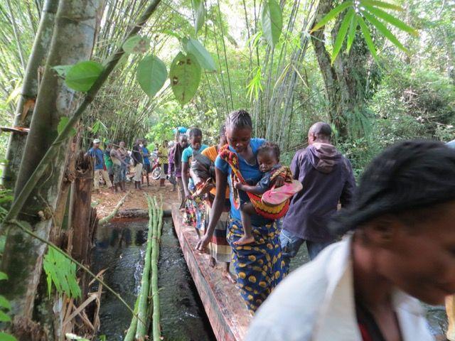 Les habitants du bassin central du Congo ont co-évolué avec leurs ressources forestières et hydriques. Photo par Theodore Trefon