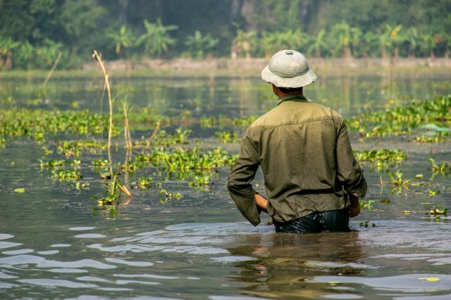A farmer standing in a flooded field.