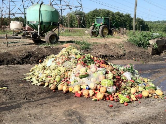 Pile of food waste