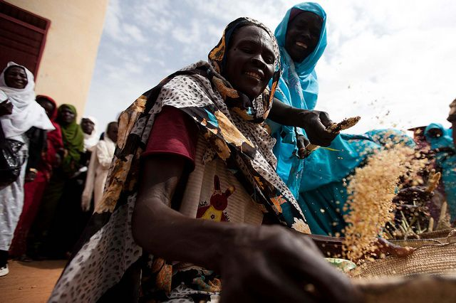 How does the world feed more than 9 billion people in the year 2050 in a manner that not only advances economic development but also reduces agriculture's impact on the environment? Photo Credit: UN/Flickr