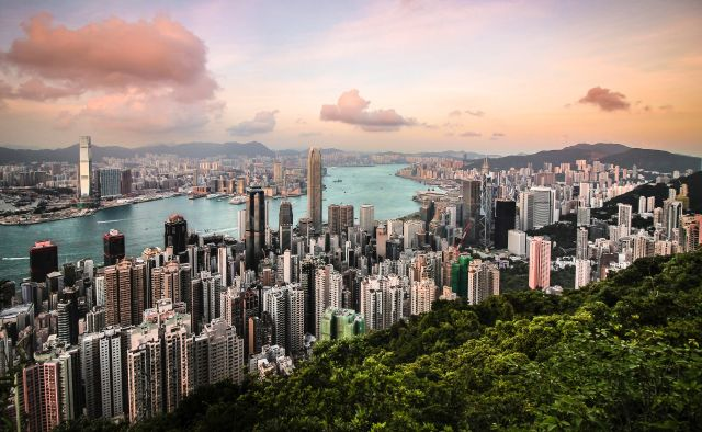 A view of Hong Kong from the edge of a forest.