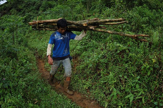 Our future is inextricably linked to forests. The social and economic benefits they provide are essential to realizing a sustainable century. Photo credit: CIFOR, Flickr 2008