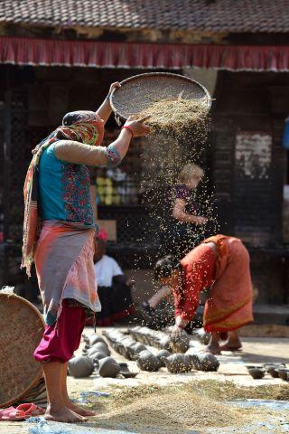 Woman pouring bowl of grain