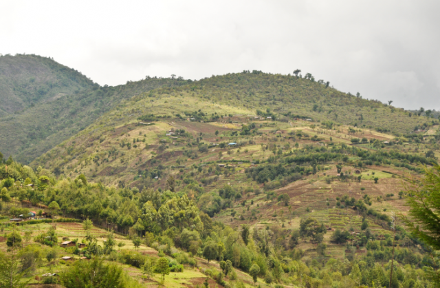 A hilly, partially forested landscape in Kenya. Photo by Aaron Minnick/WRI.