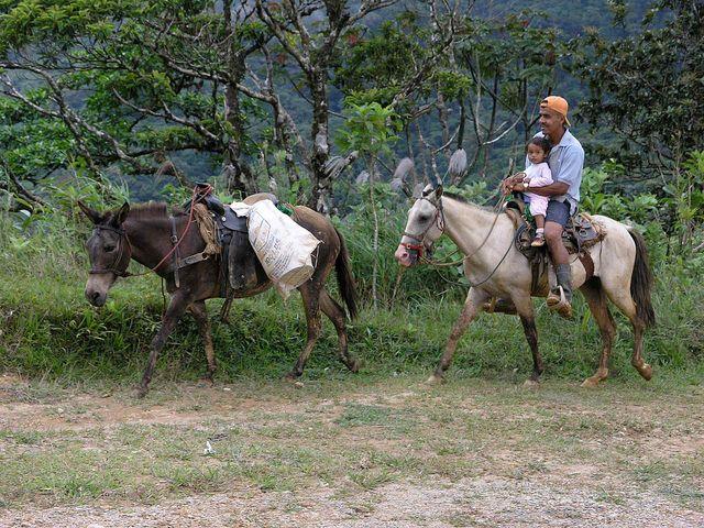 Panama's Omar Torrijos National Park. Photo credit: Lon & Queta, Flickr