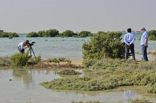 New analysis reveals that 37 countries face extremely high levels of water stress, including Qatar (shown here). Photo credit: Neil Palmer/ CIAT