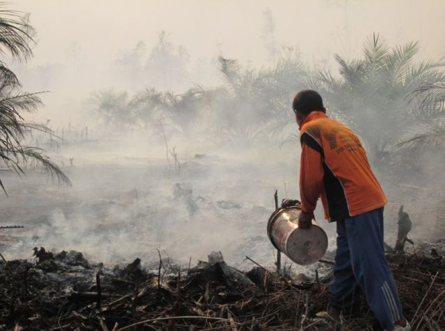 Indonesia forest fires