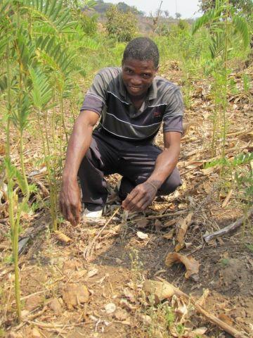 soil carbon Malawi