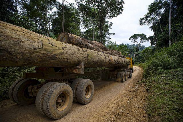 Camion de bois au Cameroun. Photo: Ollivier Girard/CIFOR/Flickr.