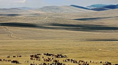A new solar project funded by the GCF will provide energy to Central Mongolia. Flickr/Daniela Hartmann