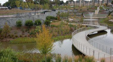 Riverside trees in Atlanta's 4th Ward Park. Flickr/DeepRoot