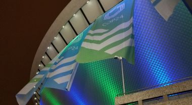 COP24 flags