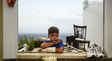 Hurricane Maria's devastating effect on Puerto Rico won't escape notice at COP. (Flickr/USDA)