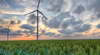 Wind turbines north of Corpus Christi, Texas. Flickr/Drew Kolb