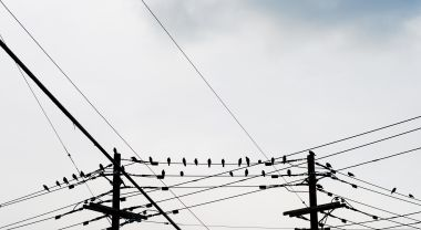 Where cities have relatively clean grids, they should electrify as much as possible. Flickr/Eric