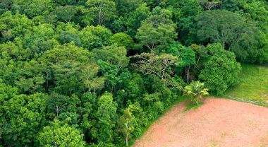 Aerial shot of forest and agricultural landscapes in Brazil