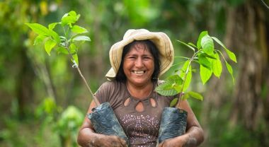 A woman holding saplings ready to be planted on her coffee farm in Peru.