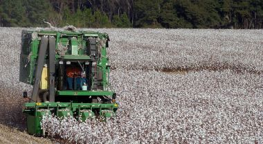 New WRI analysis shows that 57 percent of the world's cotton is grown in water-stressed areas. Photo credit: Stephen Morton, Flickr
