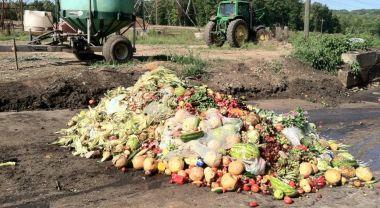 Pile of food waste