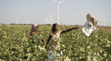 The Private Sector Can Play a Positive Role in India's Renewable Energy Growth. Photo credit: The Danish Wind Industry Association, Flickr 2008